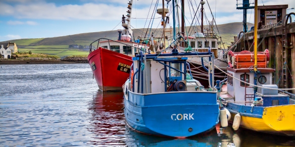 Dingle Harbor
