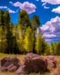 Mountain_Meadow-1jPhotoArt (1 of 1)