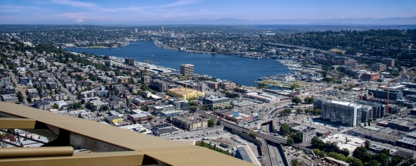 Lake Union From Space Needle