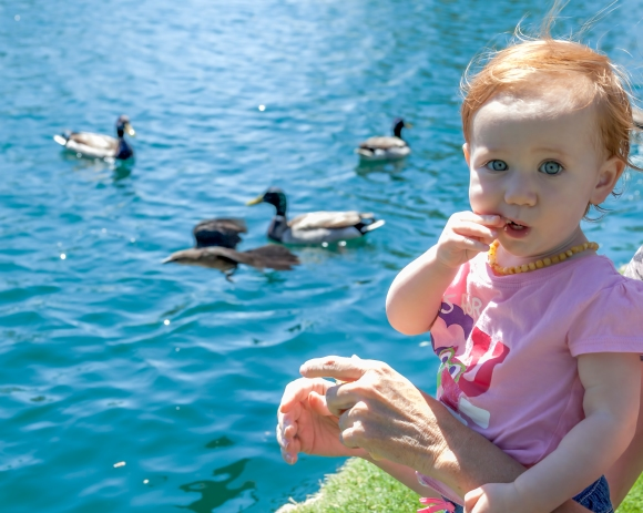 At Anthem, AZ Community Park (Isabella kept eating the bread when we gave it to her to throw to the ducks)