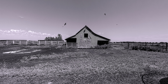 Barn near St. Joseph, Kansas