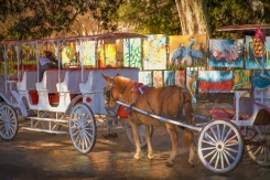 Horse Carriage & Art fap glossy