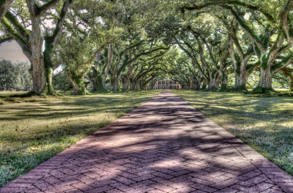Oak Alley Plantation in  Vacherie, Louisian