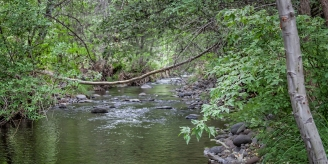 Clear Creek - Near Zane Grey RV Park