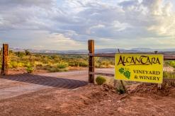 Alacantara Vineyard - near Cottonwood, AZ